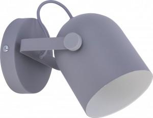 SPECTRA gray I 2615 TK Lighting